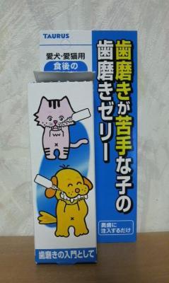 ニャンコ歯磨き