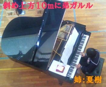 NEC_00652.jpg