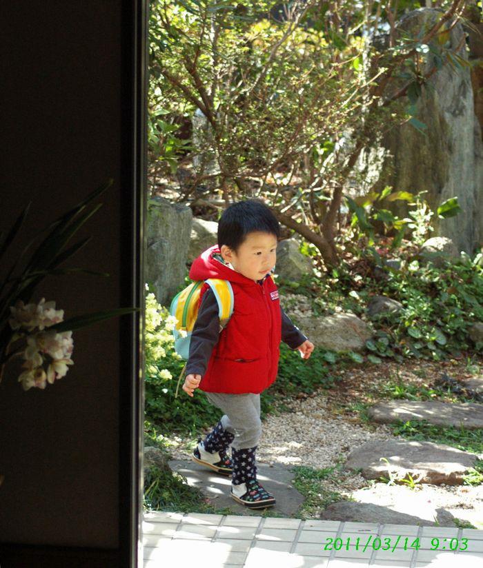 小さな訪問者1
