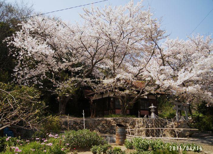 滝の宮神社1