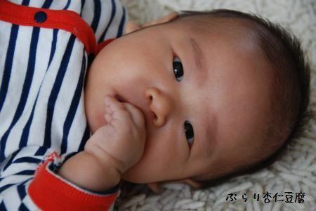 006_convert_20110407122123.jpg