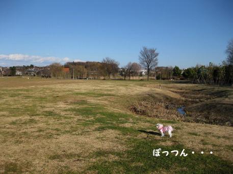 20100106-052.jpg