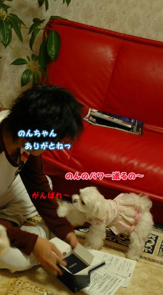20110113-041.jpg