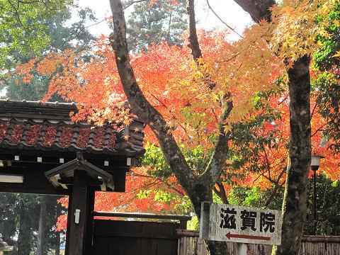 比叡山10.12.5-1