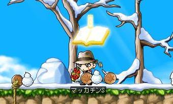 Maple8052a.jpg