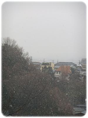 20112012-03.jpg