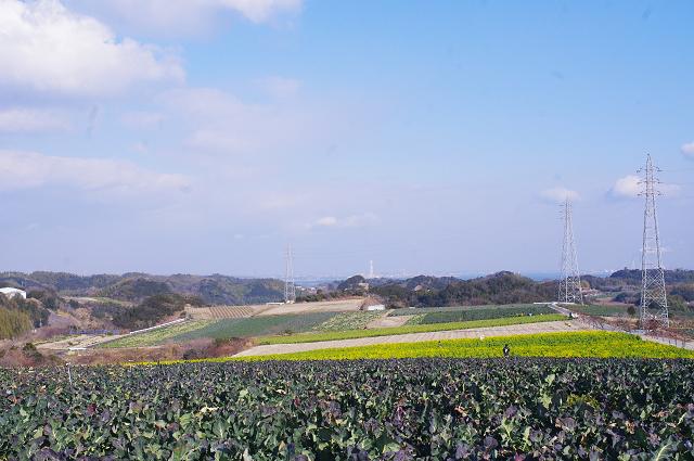 2012,90214畑