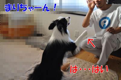 004156_convert_201008052059.jpg