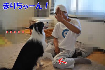 004237_convert_201008052100.jpg