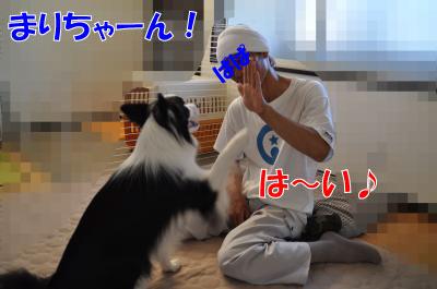 004244_convert_201008052101.jpg