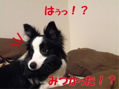 1-759_convert_20100402224137.jpg