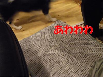 114-1_convert_20100312224237.jpg