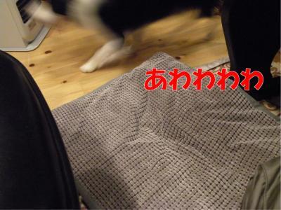 115_convert_20100312225117.jpg