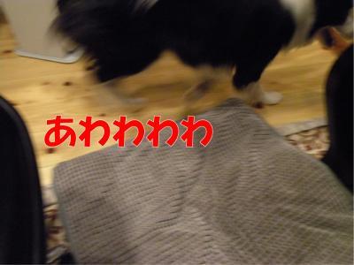 116-1_convert_20100312224248.jpg