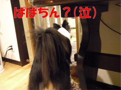 122-1_convert_20100312224307.jpg