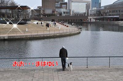 201102-kans3.jpg