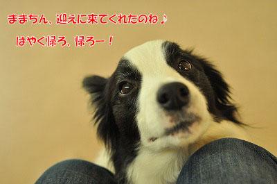 20120319-ken01.jpg