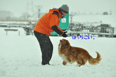 20120320-ren04.jpg