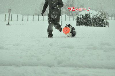 20120320-ren07.jpg