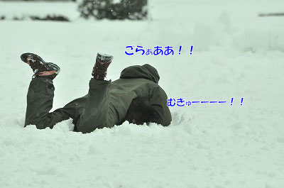 20120320-ren09.jpg