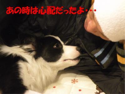 DSCN1391-1_convert_20100121222631.jpg