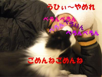 DSCN1397-2_convert_20100122204250.jpg