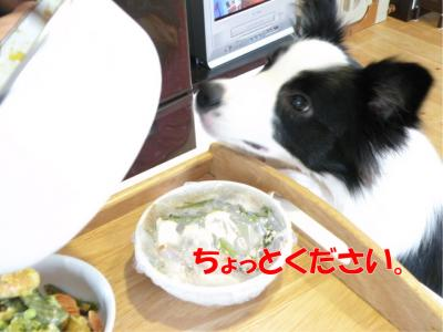 DSCN2094_convert_20100209212257.jpg