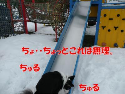DSCN3056_convert_20100214214905.jpg