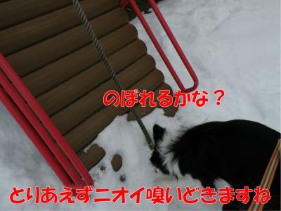 DSCN3057_convert_20100214214916.jpg