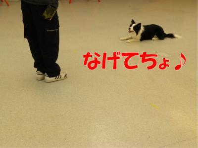 a-144_convert_20100313221834.jpg