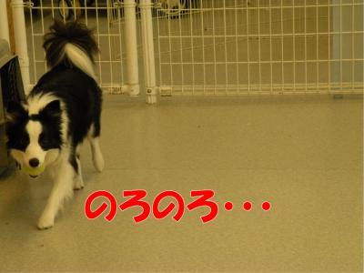 a-155_convert_20100313221906.jpg