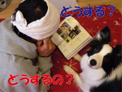 a-1678_convert_20100418223615.jpg