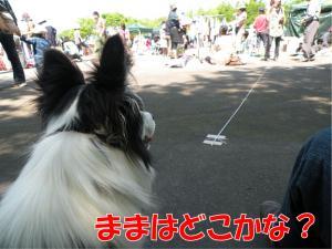 a-2318_convert_20100517215320.jpg