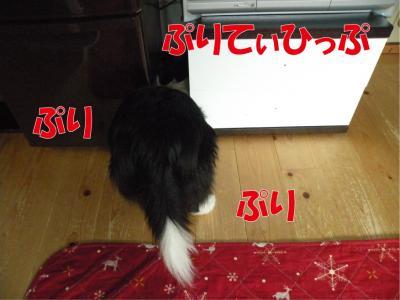 a-899_convert_20100403232919.jpg