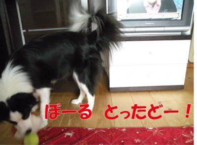a-902_convert_20100403232943.jpg