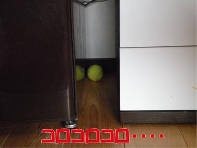 a-903_convert_20100403232953.jpg