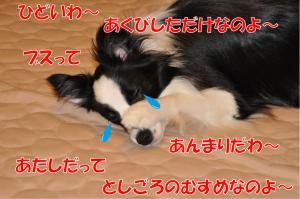 aaaaa-3251_convert_20100626222502.jpg