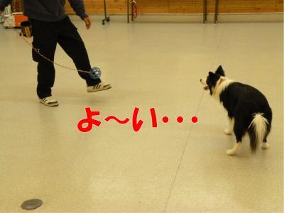 b-161_convert_20100313222005.jpg
