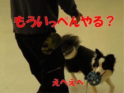 b-164_convert_20100313222016.jpg