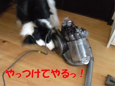 b-257_convert_20100327165717.jpg