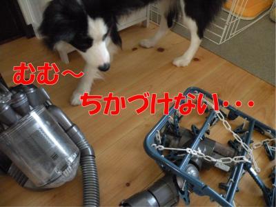 b-277_convert_20100327165803.jpg