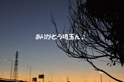 d-792.jpg