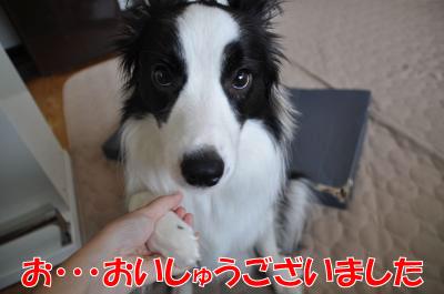 d4086_convert_2010080221160.jpg