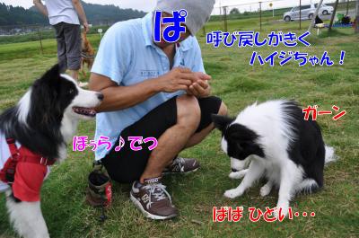 hhh5174_convert_20100819204.jpg