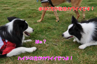 hhh5191_convert_20100819204.jpg