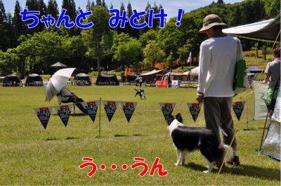 j-2821_convert_20100607231352.jpg