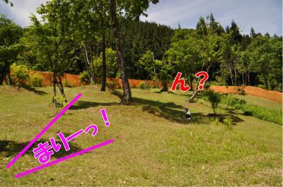 j-2893_convert_20100608210210.jpg