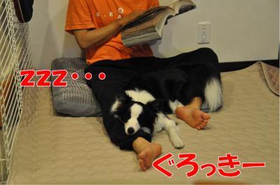 j-2945_convert_20100607231429.jpg
