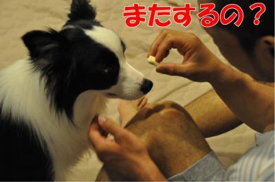 k-3553_convert_20100707211019.jpg