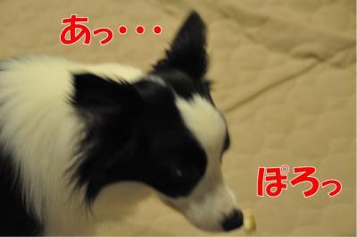 k-3562_convert_20100707211128.jpg